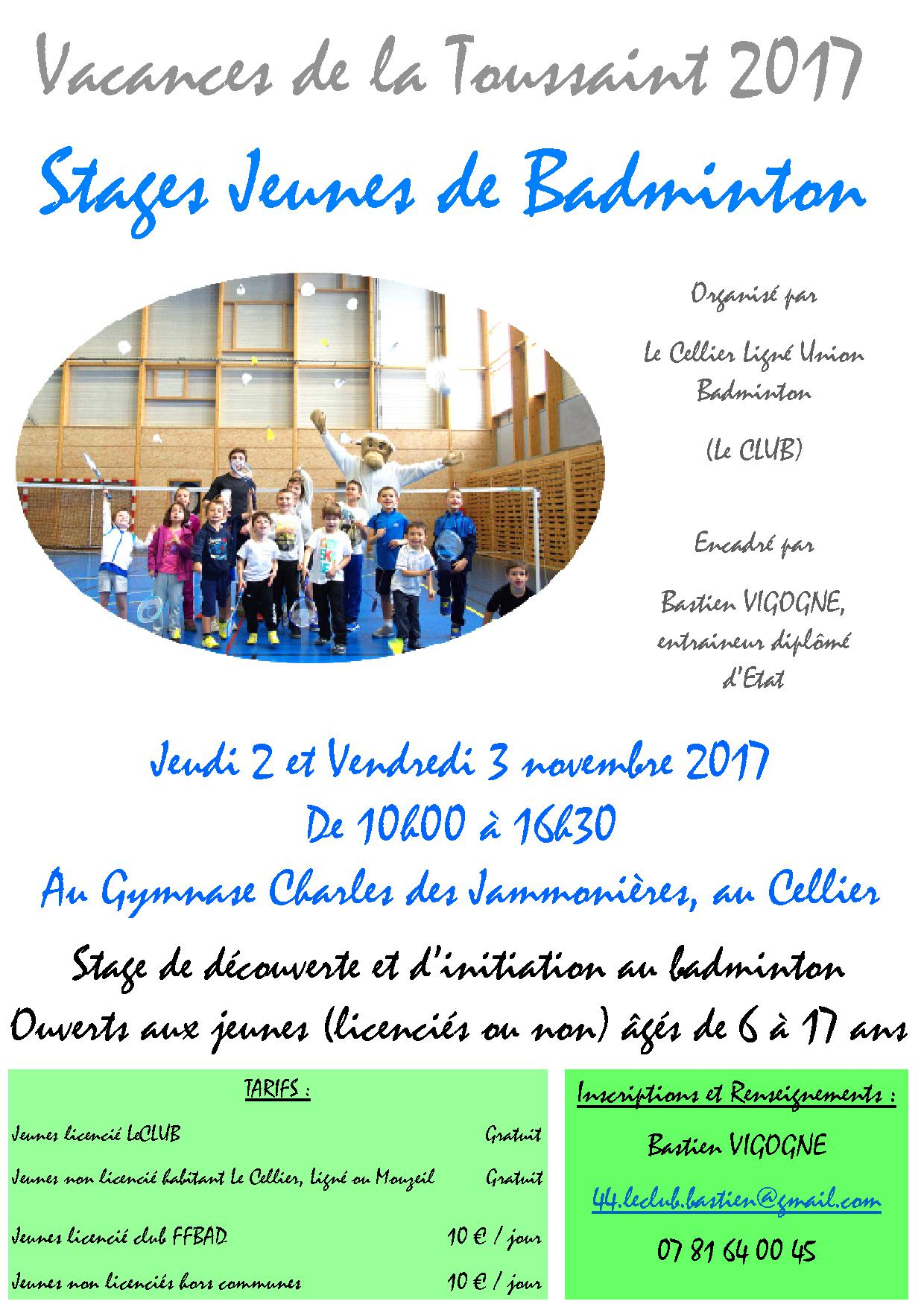 Affiche stages jeune BAD